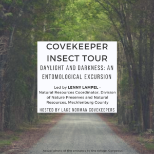 Covekeeper Insect Tour – Insects of the Daylight and Darkness: An Entomological Excursion