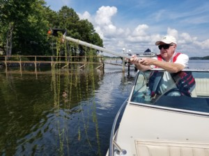 Hydrilla Explodes In Lake Norman